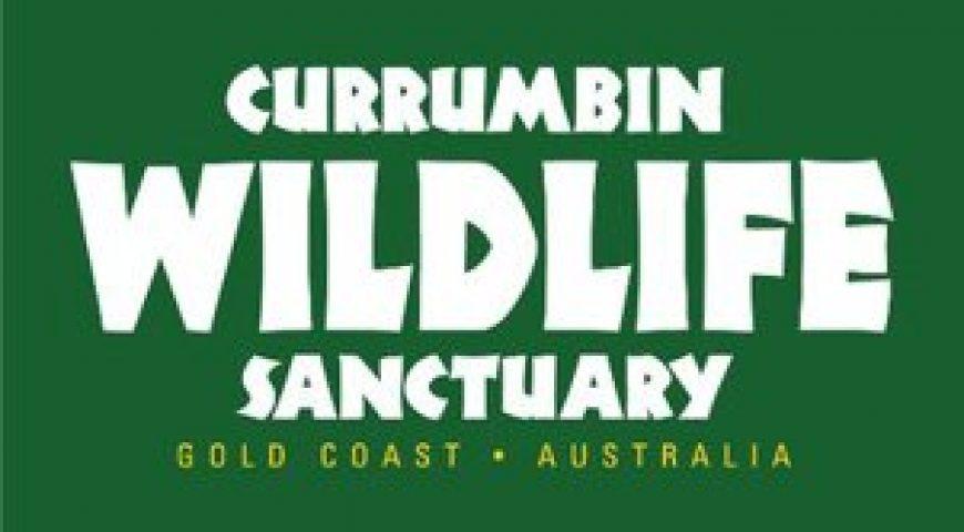 CWS Logo_301x244