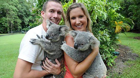 Cuddling Koalas_570x320